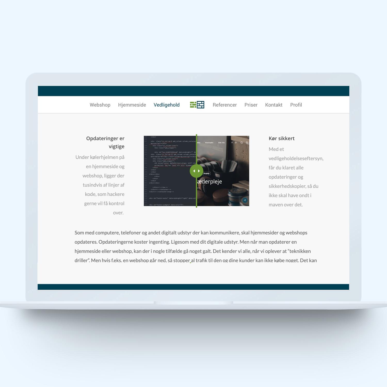 Onlineeftersyn's hjemmeside eksempel